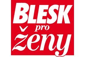 blesk logo works